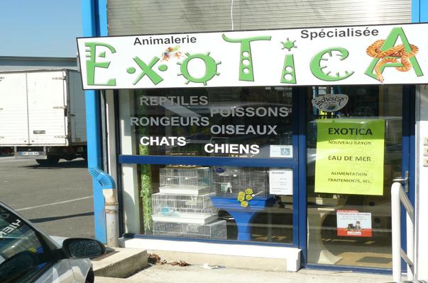 Enseigne : Exotica